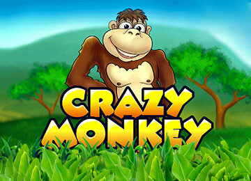 Crazy Monkey Slot